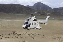 Airbus Helicopters AS332 C1e: Buyer's and Investor's Guide